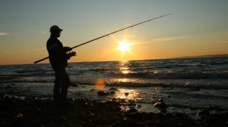 How Bowfishing Reels Play a Vital Role in Fishing