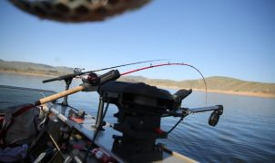 Best Trolling Motors with GPS Anchor