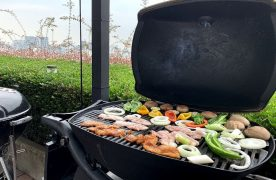 Best Portable Grill for RV Use