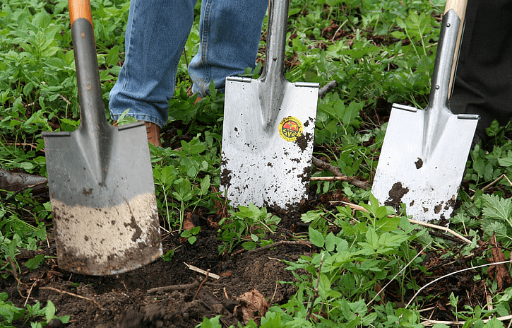 Best Shovels for Digging Holes in Your Garden